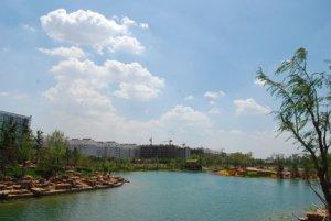 潍fang高新区浞河Ⅱ区景观绿化工程
