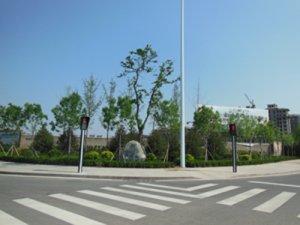 weifangshi乐川街dao路绿huagong程