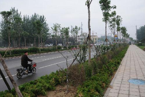 潍fang市卧龙西街(西环路—changsong路)